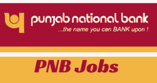 Punjab National Bank Recruitment 2017 for 45 Manager Posts